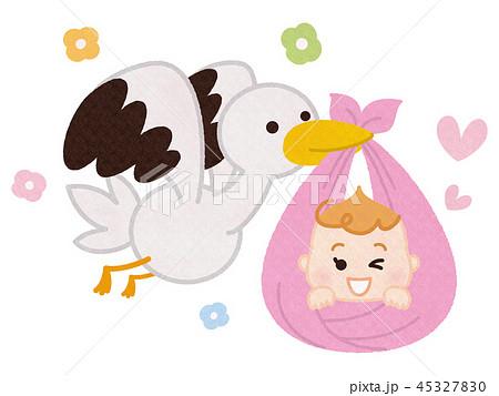コウノトリと赤ちゃん 45327830
