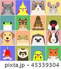 いろいろなペットの顔セット 背景カラー 45339304