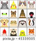 いろいろなペットの顔セット 背景カラー 45339305