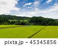 水田 空 稲の写真 45345856