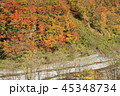 風景 姫川渓谷 渓谷の写真 45348734