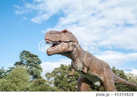 大きく口を開けた大型の恐竜の模型 45354828