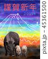 2019年賀 富士と街と日本イノシシ 45361500