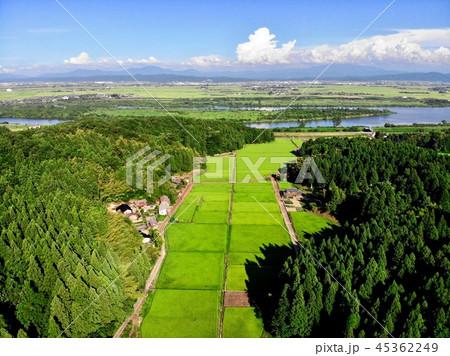 上空から見る田園風景と信濃川 45362249