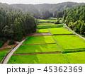 新潟県与板町の田園風景 45362369