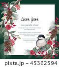 花 ベクター 鳥のイラスト 45362594