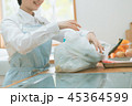 Housework 45364599