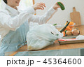 Housework 45364600