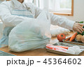 Housework 45364602