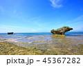 西表島 リゾート 南風見の写真 45367282