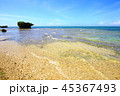 西表島 リゾート 南風見の写真 45367493