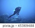 水中 ダイバー 潜水夫の写真 45369488