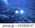 水中 ダイバー 潜水夫の写真 45369547