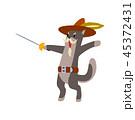 ねこ 刀 剣のイラスト 45372431