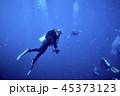 ダイバー 潜水夫 ダイビングの写真 45373123