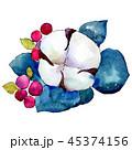 水彩画 花 葉のイラスト 45374156