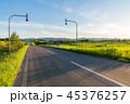 風景 道 一本道の写真 45376257