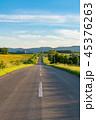 風景 道 一本道の写真 45376263