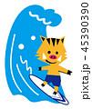 サーフィンを楽しむ亥 45390390