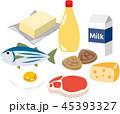 動物性食品 45393327