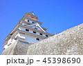 唐津城 舞鶴城 城の写真 45398690