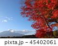 秋 紅葉 もみじの写真 45402061