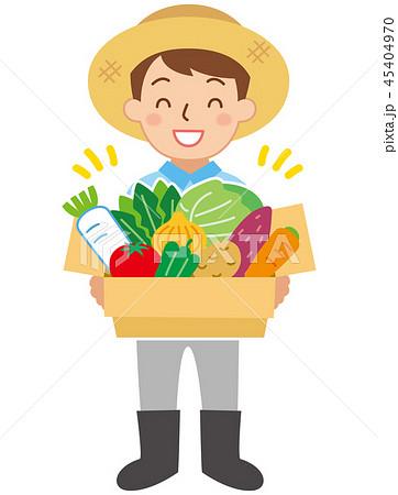 農家と野菜箱 45404970