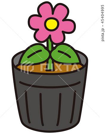花の苗 45404995