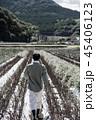 1人 男性 畑の写真 45406123