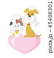 動物 ペット 犬のイラスト 45406301