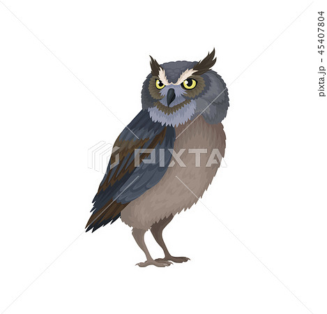 Owl with yellow eyes and blue-brown plumage. Wild flying creature. Flat vector element for 45407804