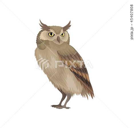 Flat vector icon of long-eared owl isolated on white background. Wild bird with brown feathers 45407808