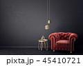 interior 45410721