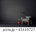 interior 45410727