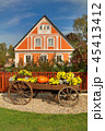 Beautiful traditional cottage in Czech republic 45413412