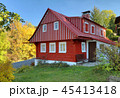 Traditional wooden cottage in Czech republic 45413418