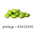 えだまめ 枝まめ 枝豆の写真 45413545