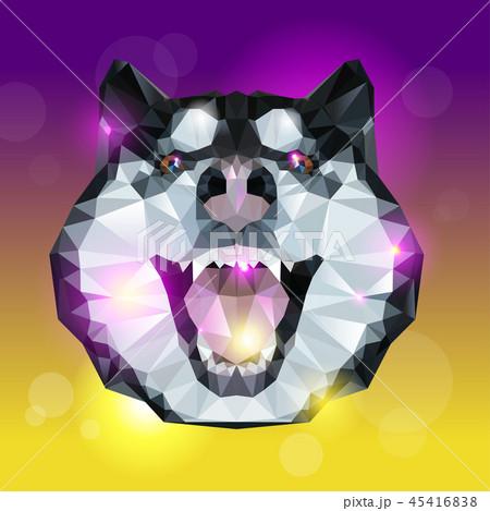 Geometric head of husky dog with bright background 45416838