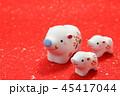 亥年 亥 猪の写真 45417044