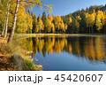 Black lake in Jirasek rocks in Czech republic 45420607
