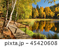 Black lake in Jirasek rocks in Czech republic 45420608
