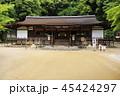 5月 新緑の宇治上神社 45424297