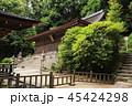 5月 新緑の宇治上神社 45424298