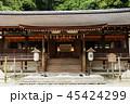5月 新緑の宇治上神社 45424299