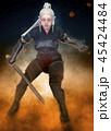 戦士 エルフ 女性のイラスト 45424484