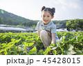 アジア人 アジアン アジア風の写真 45428015