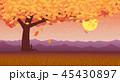 あき 秋 銀杏のイラスト 45430897
