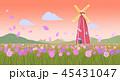 あき 秋 コスモスのイラスト 45431047