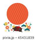 年賀状素材 亥年 猪のイラスト 45431839
