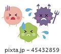 善玉菌 悪玉菌 日和見菌のイラスト 45432859